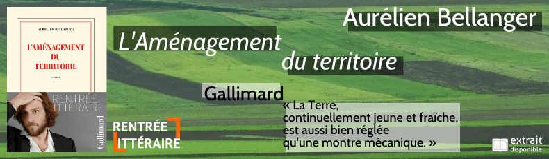amenagement-du-territoire-aurelien-bellanger-gallimard